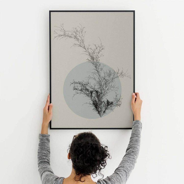 Картина Цветы Пустыни