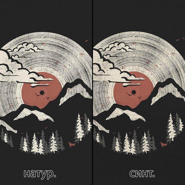 Картина Горный Винил