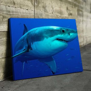 Картина Акула