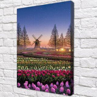 КартинаАмстердамкиецветы