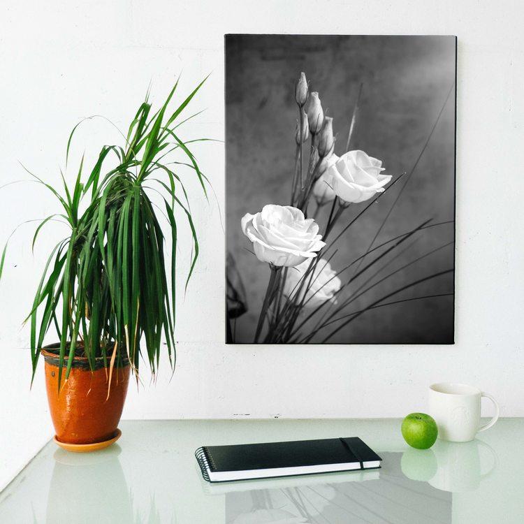 Картина Розы ЧБ