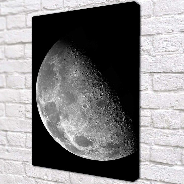 Картина Луна ЧБ
