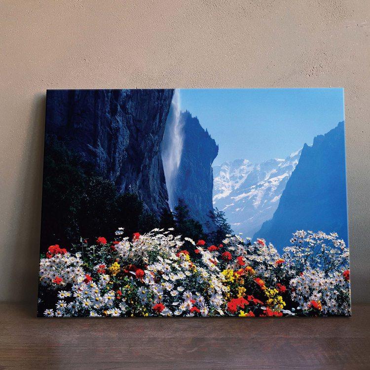 Картина Горные Цветы
