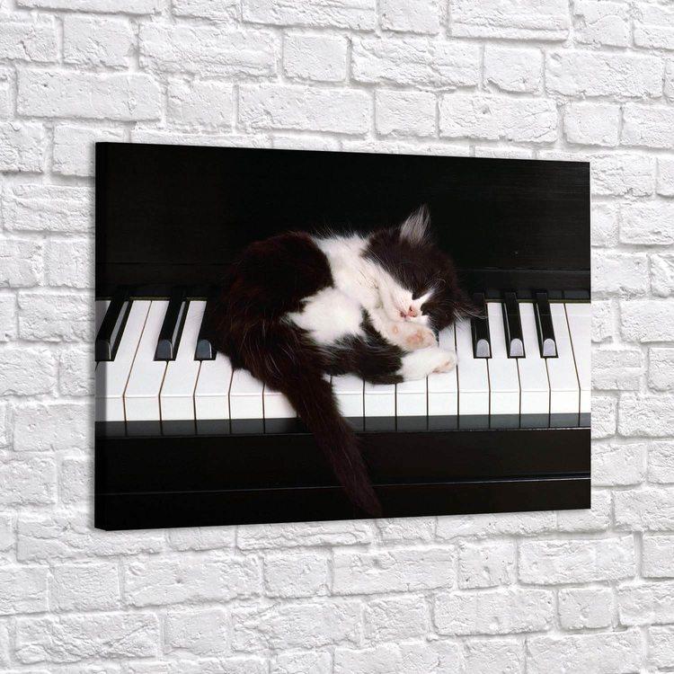 Картина Котенок Пианист - p53791