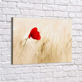 Картина Красный Мак - p53370