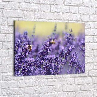 Картина Пчелы И Лаванда - p53390