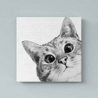 Картина Пушистая Мордашка