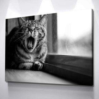Картина Сонный Котик