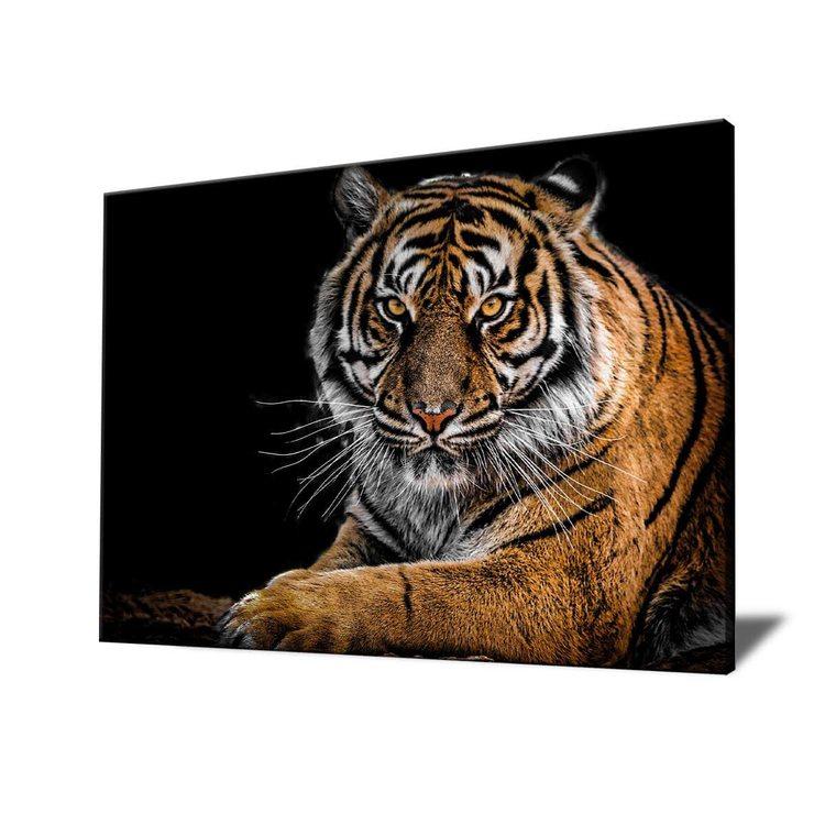 Картина Суровый Тигр - p53616