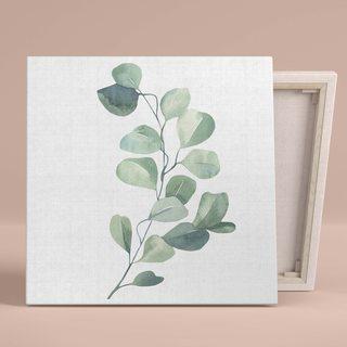 Картина Ветвь Эвкалипта