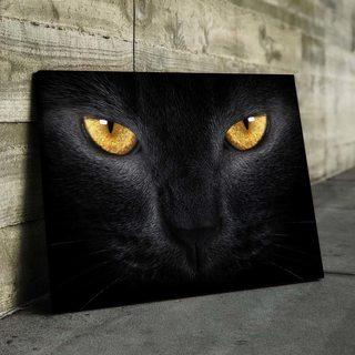 Картина Взгляд Кошки