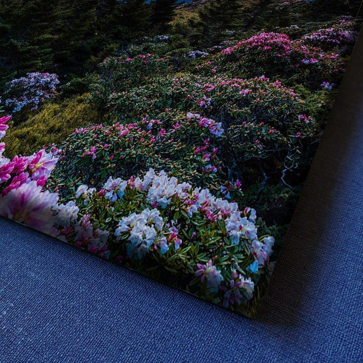 Картина Закат В Горах