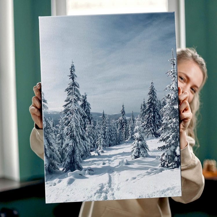 Картина Заснеженный лес