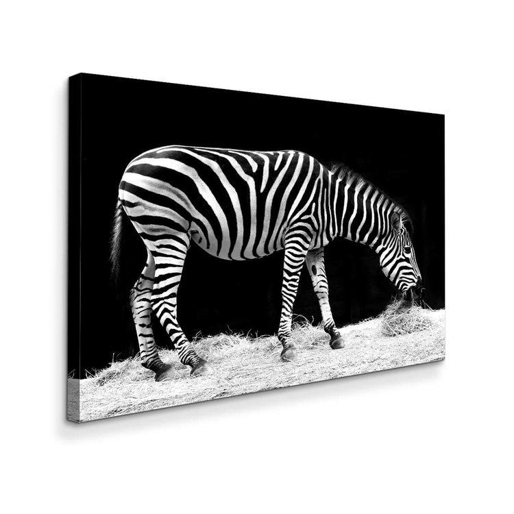 Картина Зебра - p53814