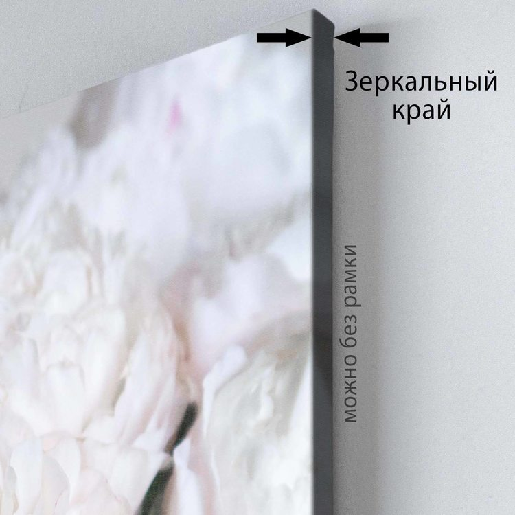 Комплект Картин Пионы