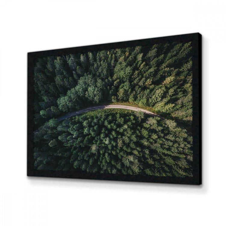 Картина Лесная Дорога