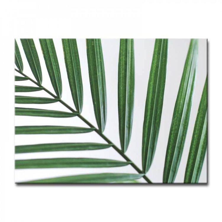 Картина Пальмовый Минимализм
