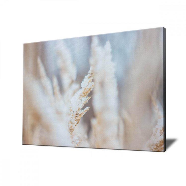 Картина Пшеница