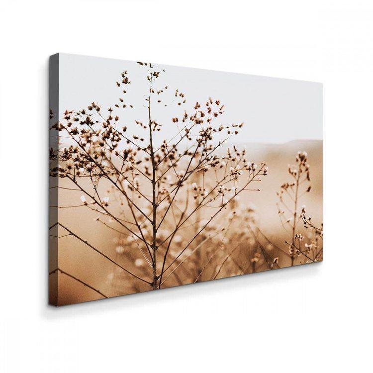 Картина Сухоцветы В Поле