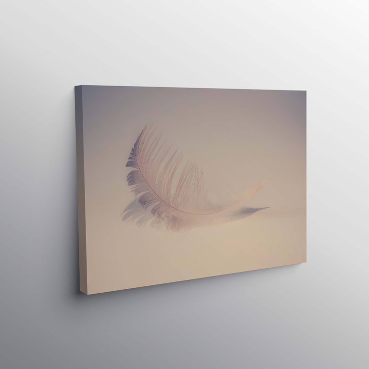 Картина Воздушное Перо