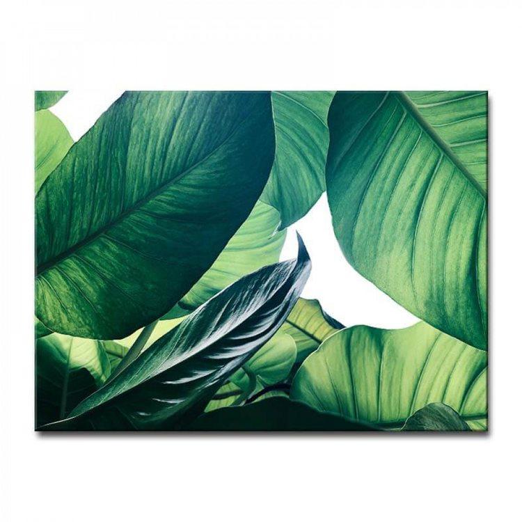 Картина Зеленая Листва