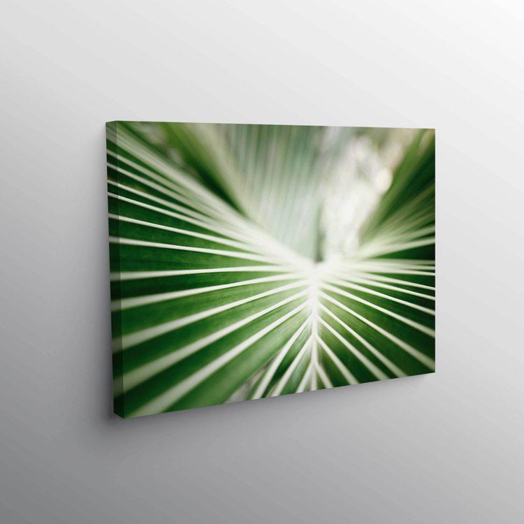 Картина Зеленый Лист