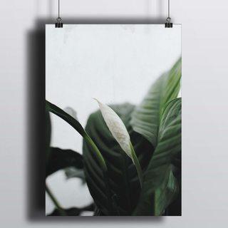 [HD] Постер Скандинавский Цветок